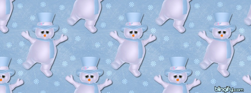 Bluesnowman facebook cover