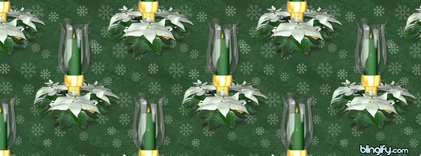 Greenpoinsettia facebook cover