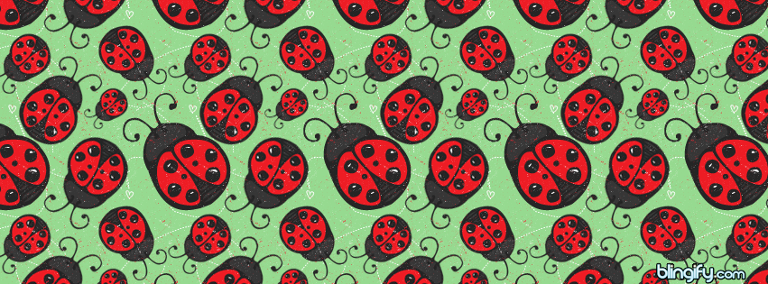 Lady Bird facebook cover