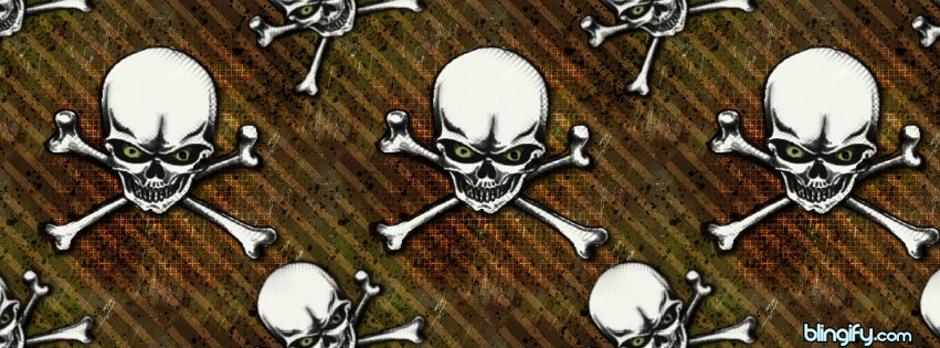 Skullbrown facebook cover