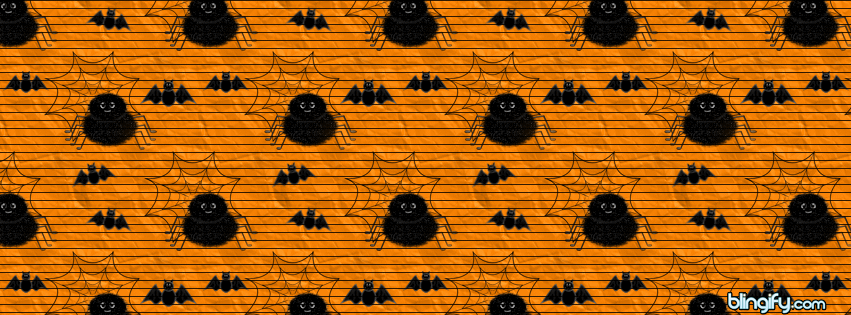 Spider Bats facebook cover