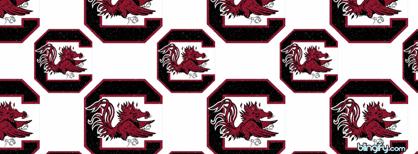 South Carolina Gamecocks facebook cover