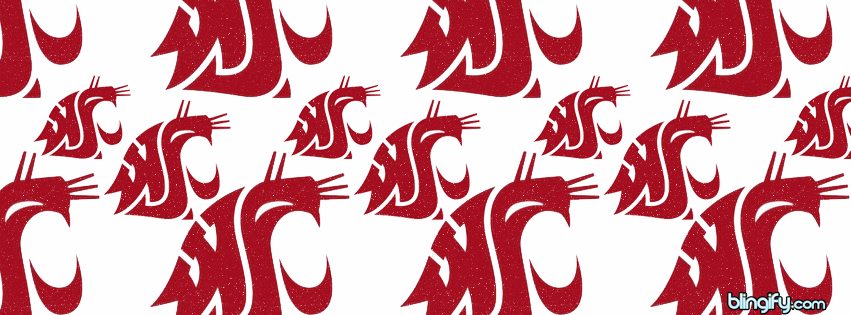 Washington State facebook cover