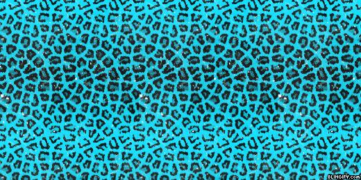 Animal Print google plus cover