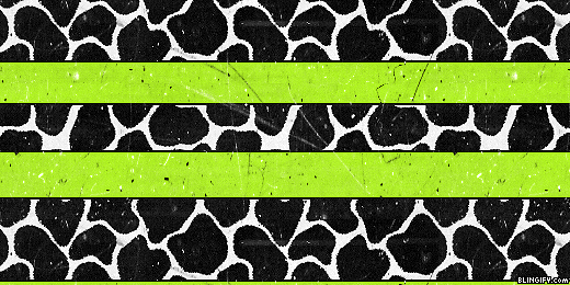 Animal Print google plus cover