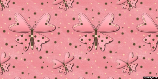 Pink Butterfly google plus cover