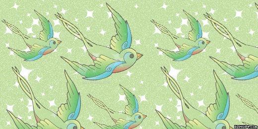 Cute Bird google plus cover