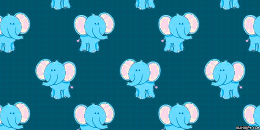 Cute Elephant google plus cover