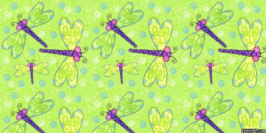 Dragonfly google plus cover