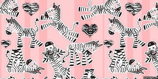 Zebra google plus cover