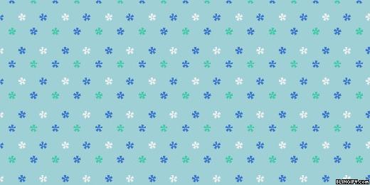 Flower Stars google plus cover