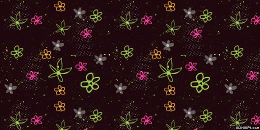 Flower  google plus cover