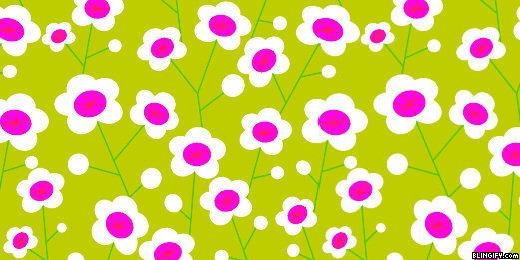 Retroflowers google plus cover