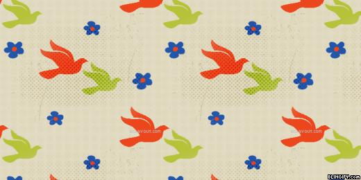 Bird google plus cover