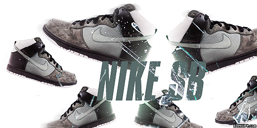 Nike Sb google plus cover