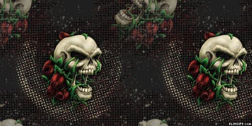 Roseskull google plus cover