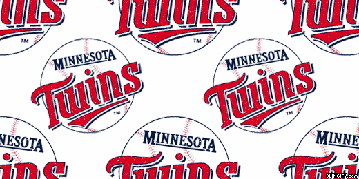 Minnesota Twins google plus cover