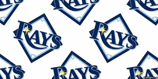 Tampa Bay Rays google plus cover