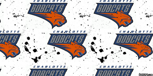 Charlette Bobcats google plus cover