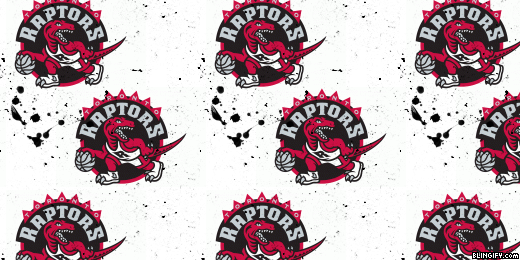 Raptors google plus cover