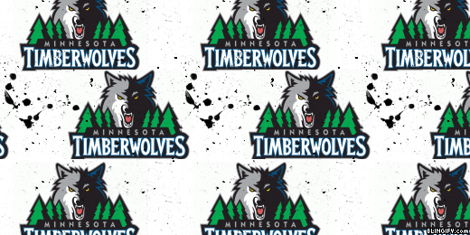 Timberwolves google plus cover