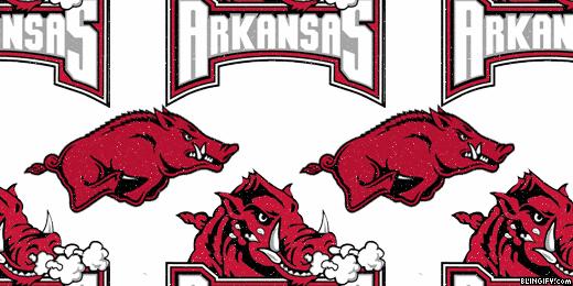 Arkansas Razorbacks google plus cover