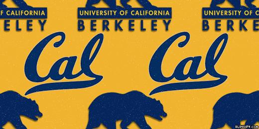 Cal Golden Bears google plus cover