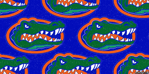 Florida Gators google plus cover