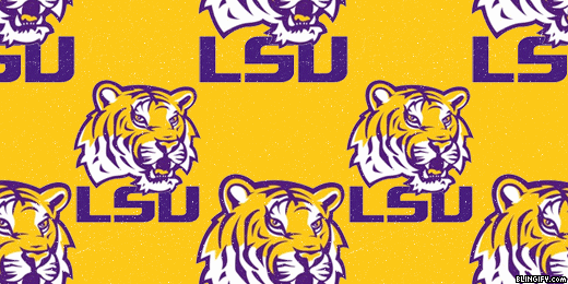 Louisiana State University google plus cover