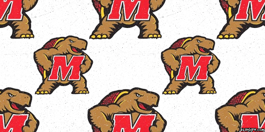 Maryland Terrapins google plus cover