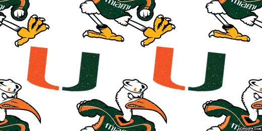 Miami Hurricanes google plus cover