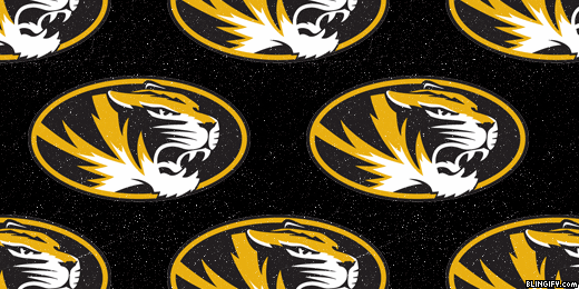 Missouri Mizzou google plus cover