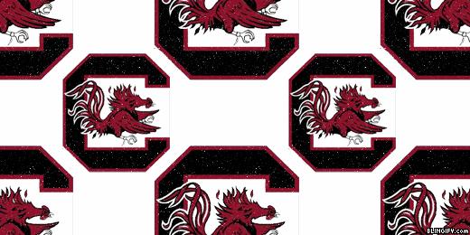 South Carolina Gamecocks google plus cover