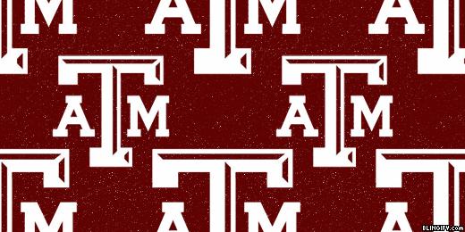 Texas Am University google plus cover