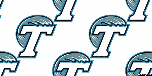 Tulane University google plus cover
