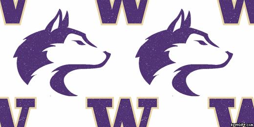 Washington Huskies google plus cover