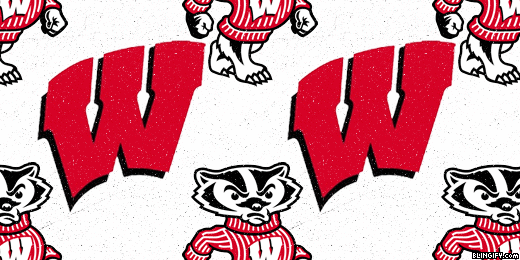 Wisconsin Badgers google plus cover