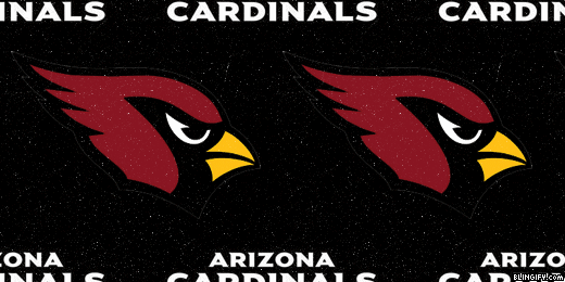 Arizona Cardinals google plus cover