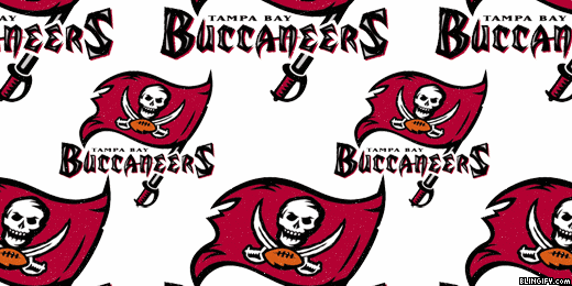 Tampa Bay Buccaneers google plus cover