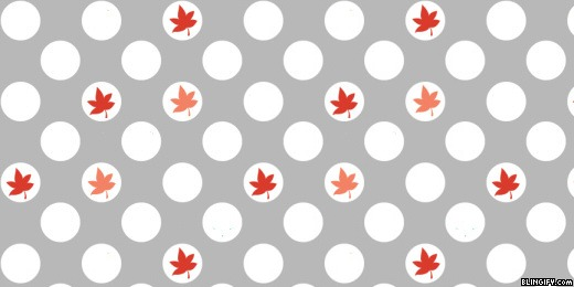 Random Leaves google plus cover