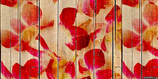 Wood Flower google plus cover